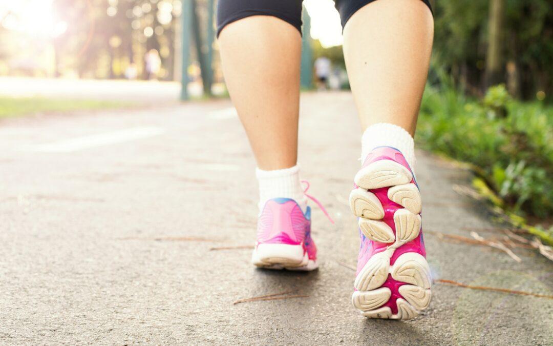 Vil du gerne i gang med succesfuld træning?