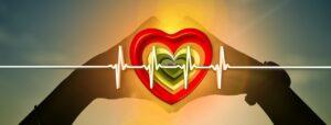 hjerte - puls