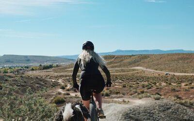 Har din træningsmakker, hunden, fået slidgigt? Få råd her